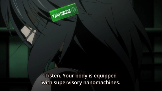 Infinite Stratos 2/HorribleSubs 13.png