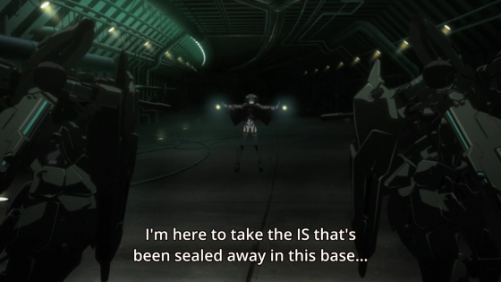Infinite Stratos 2/HorribleSubs 14.png
